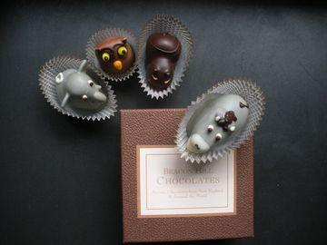 beacon-hill-chocolates